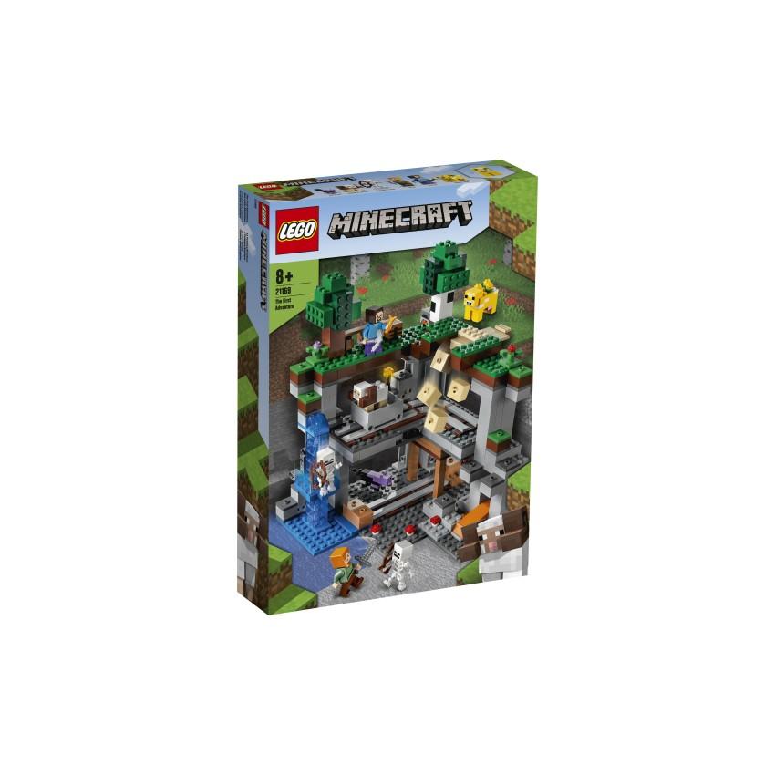 LEGO Minecraft 21169...